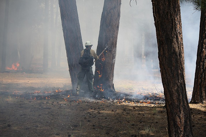 Firefighters work on ground operations within the boundary of the Pine Hollow Fire burning near Little Mountain on the North Kaibab Ranger District.