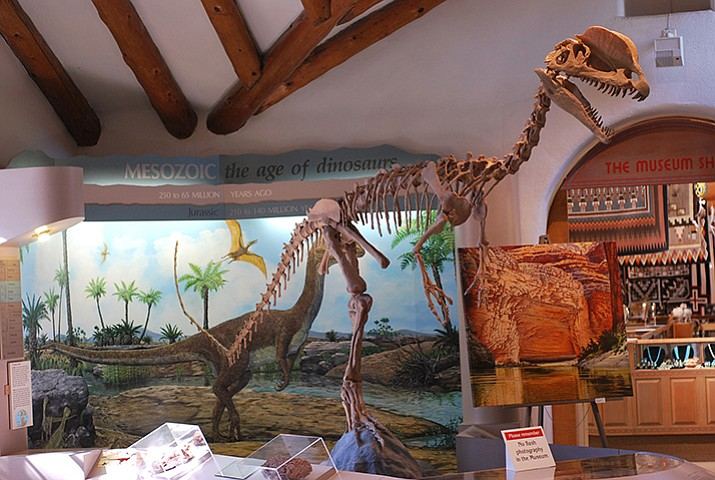 Dilophosaurus skeleton (courtesy)