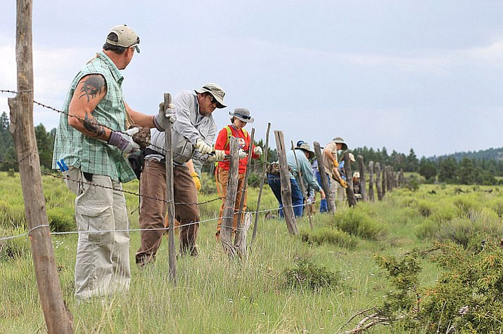 Volunteers and wildlife managers modify fences in Spring Valley Aug. 12. Workers moved the bottom wire up 18-20 inches to allow pronghorn to pass under the fences.