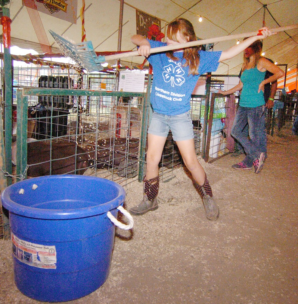 Ashlynn Luedeman cleans the stall at the 2017 Yavapai County Fair at the Prescott Rodeo Grounds Wednesday, September 7 in Prescott . (Les Stukenberg/Courier).
