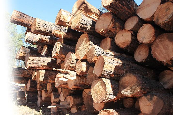 Logging trucks will haul through Parks to I-40.