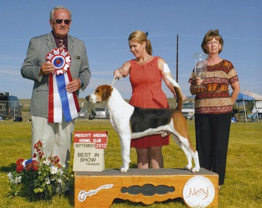 The Prescott Arizona Kennel Club's Annual Show starts Friday, Sept. 22, at the Prescott Valley Event Center.