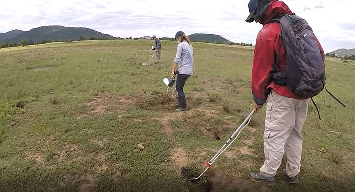 Prairie dog burrows are being dusted to prevent the spread of plague near Williams and Flagstaff.