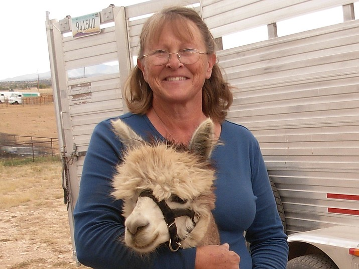 Noreen Vaughan with one of her alpacas. (Diane DeHamer/Courtesy)