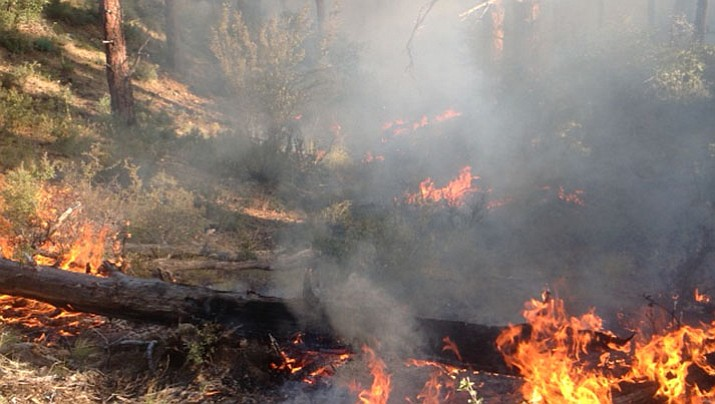 "The Loba Prescribed Burn, one mile south of Prescott, is underway, the Forest Service reported this morning, Oct. 3. It is burning ""in favorable conditions and helping to reduce hazardous fuels and return fire to its natural role in the landscape, as well as protecting surrounding communities."""