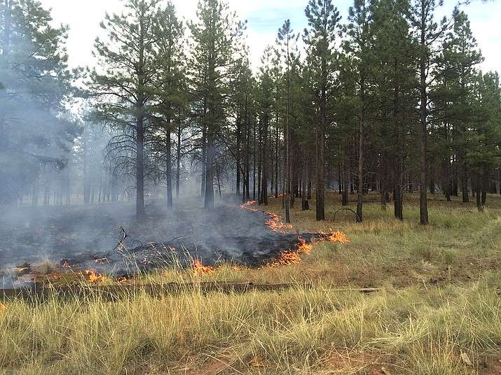 Fire managers on the south zone of the Kaibab National Forest have completed plans for the 2017 fall and 2018 spring prescribed fire burning seasons.
