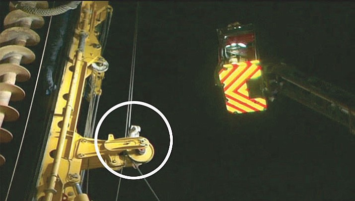 A koala that took refuge on top of a drilling rig at an Adelaide construction site was rescued early on Tuesday local Australian media reported. (Still image from video)