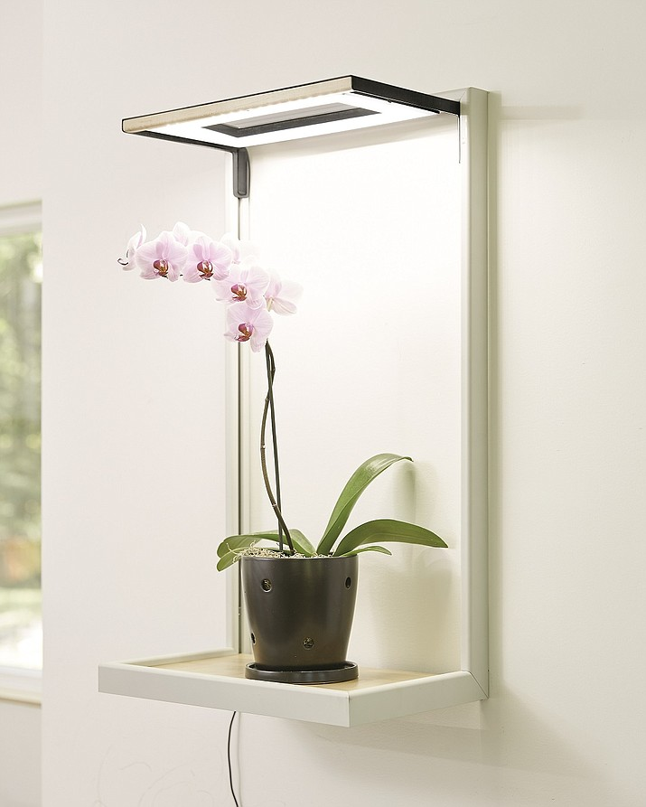 Orchids do best with 12 to 14 hours of sunlight and indoor light systems can help supplement the amount of light needed for the plants to thrive. (Gardener's Supply Company)