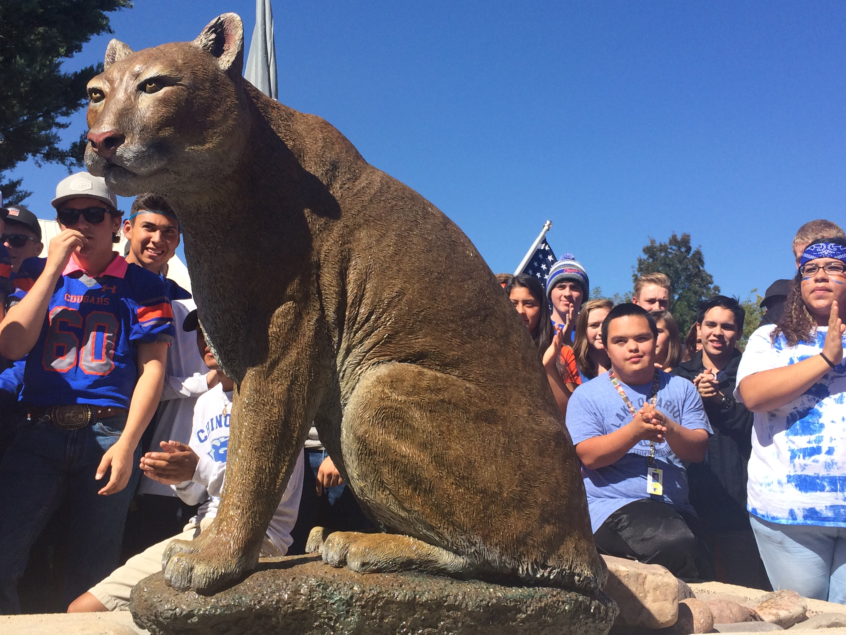 chino valley cougar women Cougar archery non-discriminiation statement spring testing student insurance tax credit schools chino valley, az 86323 | phone 928-636-2458 | fax 928-636-1434.
