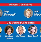 Quick guide to the Prescott General Election photo