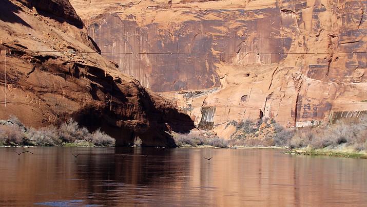 NPS extends comment period for Glen Canyon aquatic species plan