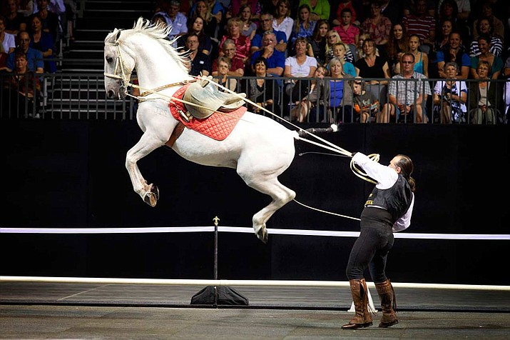 The Gala of Royal Horses will be at the Prescott Valley Event Center Saturday, Nov. 18. (Courtesy)