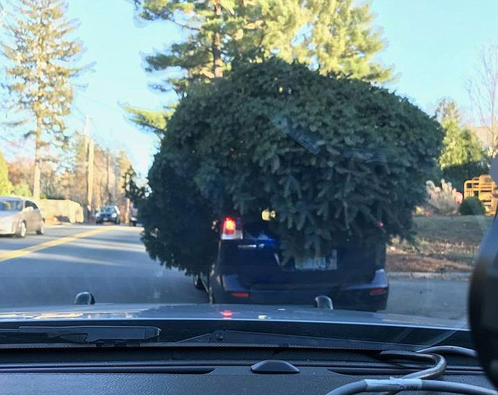 Police in a Sudbury, Massachusettsposted this photo on FacebookFriday showing a vehicle with a large tree on top of it. Almost the entire car appears to be hidden. (Sudbury Police Department)