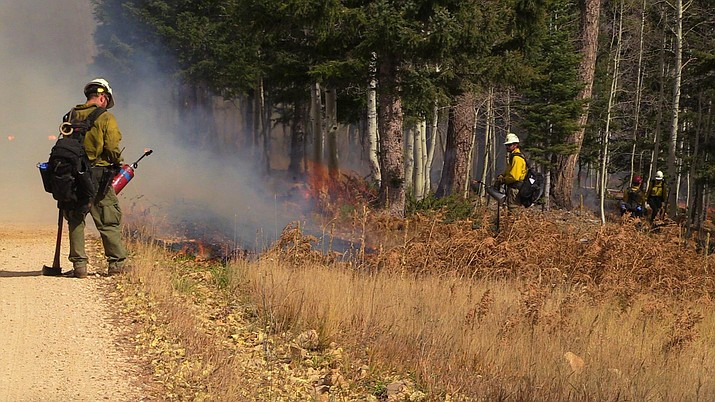 Fire personnel work on hand ignitions during the Tipover East prescribed burn in October 2017.