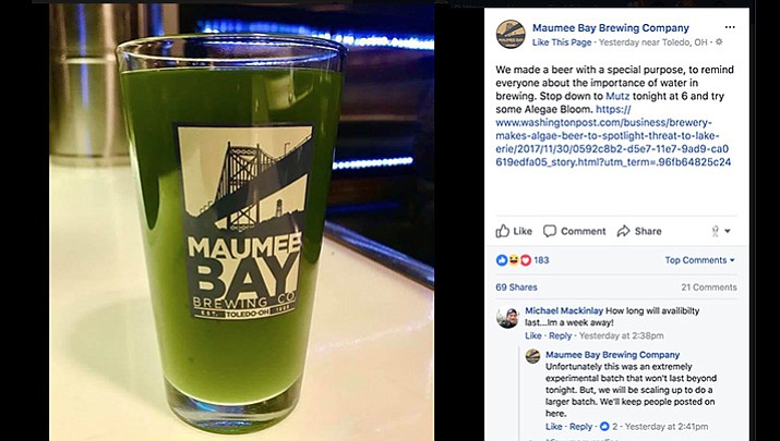"Maumee Bay Brewing Company, maker of green-colored beer called ""Algae Blooms,"" says water is the main ingredient in its beers and access to clean water is essential."
