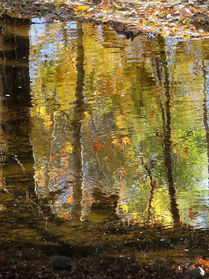 Impressionistic reflections in Clear Creek. Photo by Melissa Bowersock