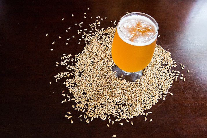 Sinagua Malt is preparing for the three-step process of germinating the harvested barley, otherwise known as malting. (VVN/Halie Chavez)