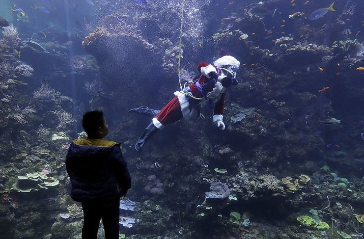 Diver George Bell, dressed as Santa Claus, waves to viewers as he swims in the Philippine coral reef tank during a presentation on fish and corals as part of the 'Tis the Season for Science holiday exhibit at the California Academy of Sciences in San Francisco, Tuesday, Dec. 19, 2017. (AP Photo/Jeff Chiu)
