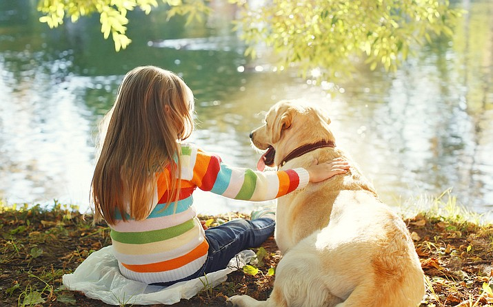 A recent Safewise Report used data from the Bureau of Labor, the Animal Legal Defense Fund (ALDF), and online pet resources to rank the most pet-friendly states in America. Arizona was ranked third-best state in the country. (Stock photo)