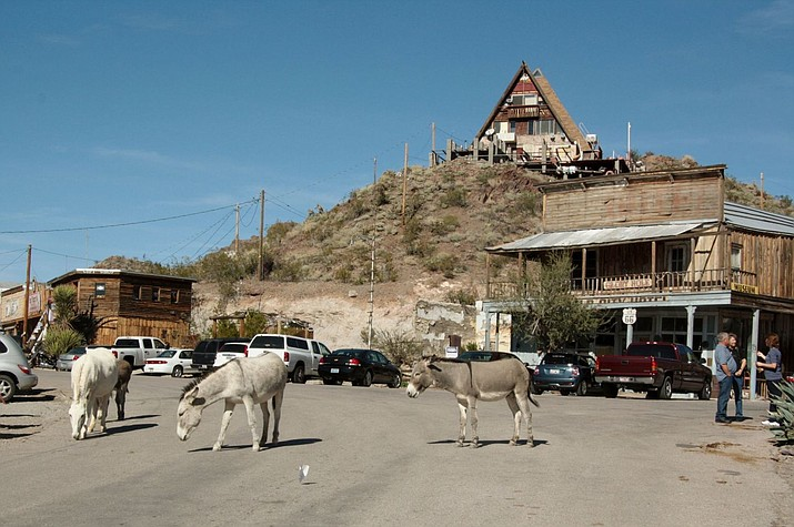 Burros wander the streets of Oatman, an old mining town in Mohave County about a 45-minute drive from Kingman.
