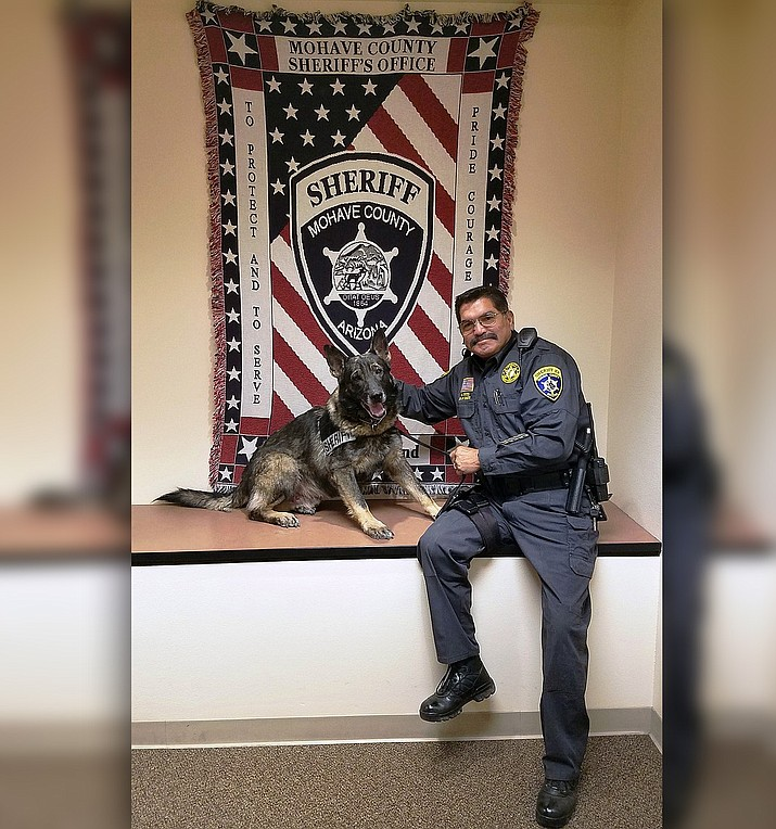 MCSO Deputy Sam Ruiz and K-9 partner Thor sit in front of the flag that hangs in the Sheriff's main office in Kingman. Deputy Ruiz and Thor, patrols Yucca and the surrounding areas including Boriana Mine Road that leads high into the Hualapai Mountains, Alamo Road south to Lake Alamo, Buckeye Estates and Santa Fe Estates. In addition to Team Ruiz/Thor, MCSO has four additional deputy/K-9 teams. They are: Deputy Keven Gunnoe and K-9 partner Bruno who patrols the Kingman area; Deputy Jeremy Felish and K-9 partner Brutus, who patrols the Arizona Strip area; Deputy John Wilson and K-9 partner Doc, who patrols Mohave Valley; and Deputy Kelly McCool and K-9 partner Chase, who patrols the Kingman area. Even though Lake Havasu City, Bullhead City and other areas within the county do not have deputy/K-9 teams assigned to them, the current members of the MCSO K-9 Program help out in those areas when needed.