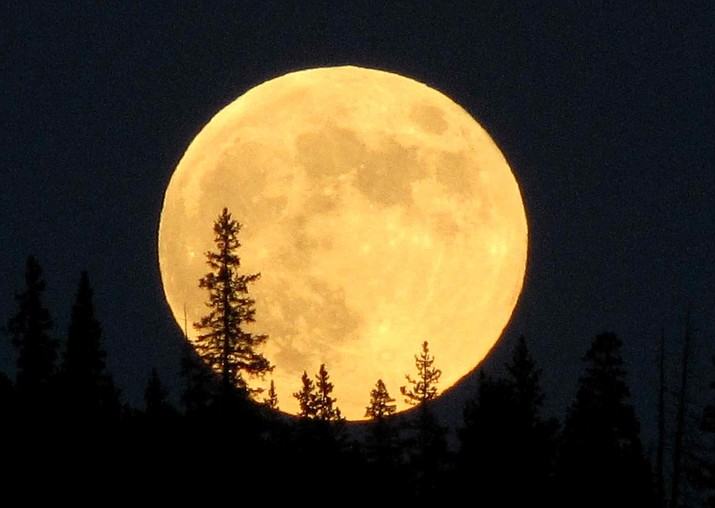 The first supermoon of the year rises up over pine trees Jan. 1.