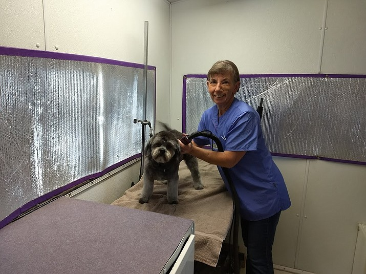 Sharon Bryant of Chino Valley has always loved dogs, which is why she has been a dog groomer for 34 years.