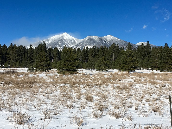 The sacred San Francisco Peaks. Photo by Katherine Locke