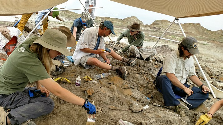 The next monthly meeting of the Verde Valley Chapter of the Arizona Archaeological Society, will be held on Thursday, Feb. 22, in the Community Room at the Sedona public Library located 3250 White Bear Road in Sedona at 7 p.m.