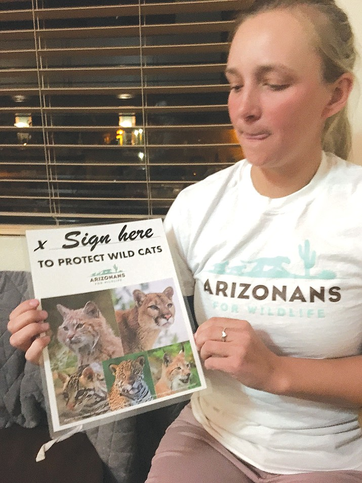Grace Kahler, volunteer with Arizonans for Wildlife, encouraged people at Mohave County Democrats meeting to sign her petition for ballot measure prohibiting trophy hunting and trapping of mountain lions, bobcats and other Arizona wild cats.