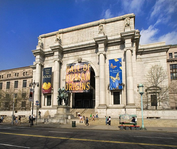 New York's American Museum of Natural History.