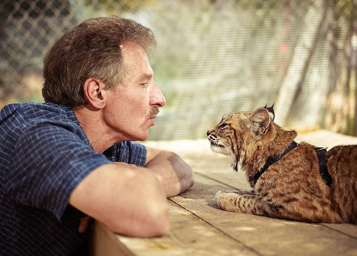 Sculptor Ken Rowe with one of his favorite subjects, Sage the bobcat. (Photo by Willie Petersen)