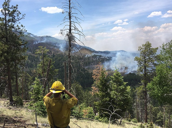 Kaibab National Forest managers are concerned with the lack of precipitation this winter in northern Arizona. The low levels are mimicking levels of 1996 and 2006, which were big fire years for the forest. (U.S. Forest Service)