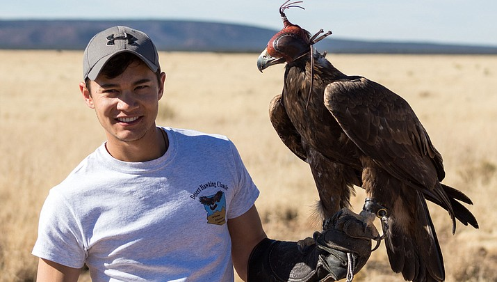 Arizona falconry takes flight in efforts to promote conservation