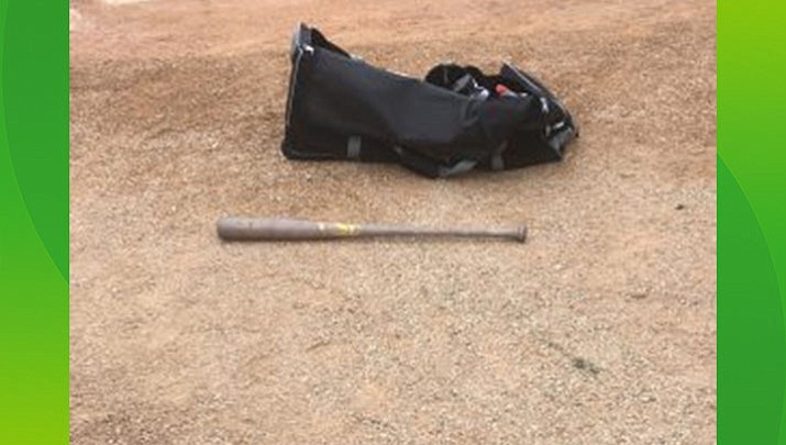 Arizona junior colleges give players  'awesome' chance to use wood bats