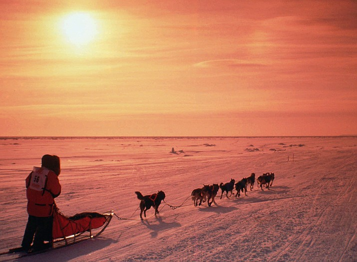 A musher drives his team, in this March 1996, file photo, across the frozen Norton Sound near Nome, Alaska, during the Iditarod Trail Sled Dog Race. The 46th running of Alaska's famed race kicks off Saturday, March 3, 2018.