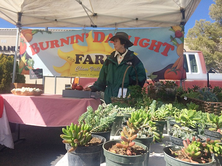 Carol Bigham of Burnin' Daylight Farm sells succulent plants at the Prescott Farmers Market. She is also currently selling tomatoes. The Prescott Winter Market is open from 10 a.m. to 1 p.m. Saturdays at 930 Division St. until Saturday, May 5. For information on other markets, visit www.prescottfarmersmarket.org. (Jason Wheeler/Review)