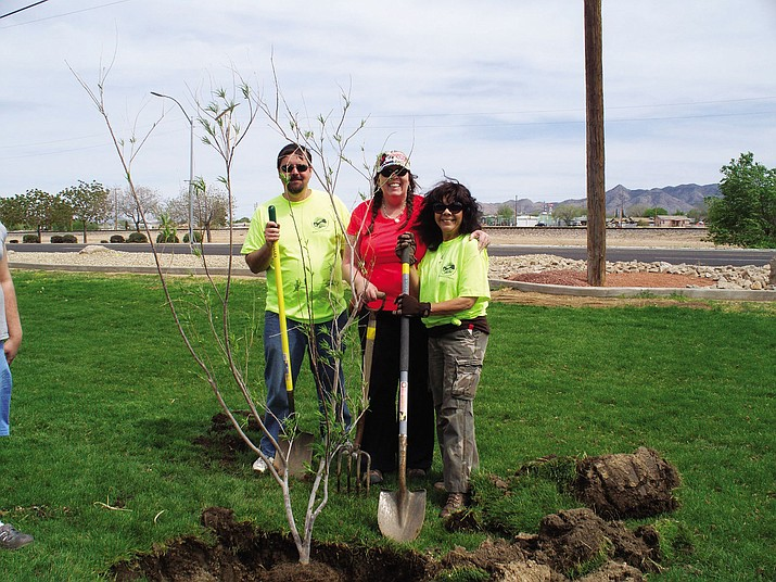 A desert willow tree was planted on Arbor Day 2014 at Lewis Kingman Park in memory of Clean City Commissioner Chuck Gibson. From left: Rich Ruggles, city of Kingman liaison to the Clean City Commission; Sherie Sixkiller-Wing, city of Kingman; and Lupe Gibson, widow of Chuck Gibson.