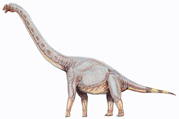 """Members of the House Government Committee unanimously endorsed the designation of the Sonorasaurus as the """"official state dinosaur.'' That sends SB 1517, which already has been approved by the Senate, to the full House. (Wikicommons)"""
