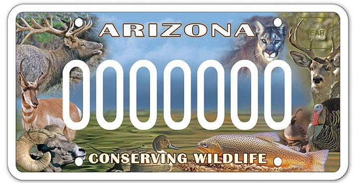 "Arizona Sportsmen for Wildlife Conservation's ""Conserving Wildlife"" license plate helps pay for wildlife habitat-restoration projects throughout Arizona. (Illustration courtesy Mingus Mountain Longbeards Chapter National Wild Turkey Federation)"
