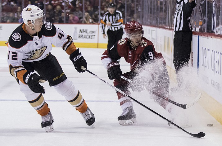 Phoenix Coyotes' Clayton Keller, right, throws up some ice as he protects the puck from Anaheim Ducks' Josh Montour during the second period Saturday, April 7, 2018, in Glendale. (Darryl Webb/AP)