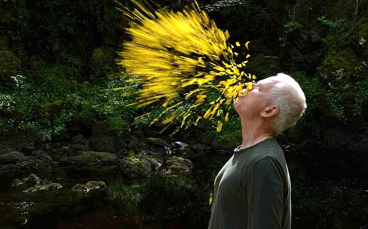 """Leaning into the Wind: Andy Goldsworthy"" follows Andy on his exploration of the layers of his world and the impact of the years on himself and his art."