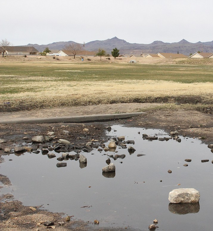 Monsoon Park, also known as the Green Hole. Councilman Travis Lingenfelter advises a proactive approach to Kingman's water issues.