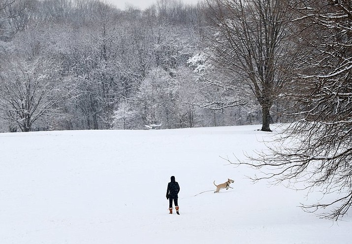 In this April 2, 2018, file photo, a woman watches as her dog runs in a snowfall that blanketed Prospect Park in the Brooklyn borough of New York. The Post-Standard reported the Depew Police Department wrote Friday, April 6, in a humorous Facebook post that it had arrested the season. Police said any more snow winter produces would be held against it in court. (AP Photo/Kathy Willens, File)