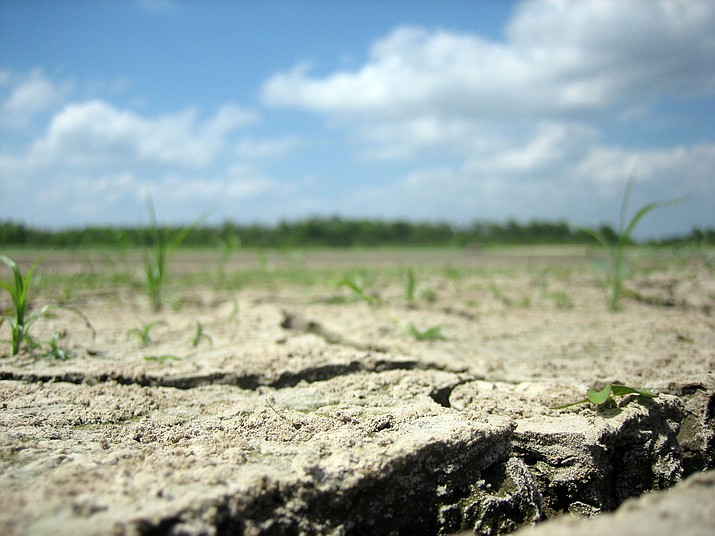Forecasters are calling for a drier and warmer spring for Arizona and the Southwest, as the state enters its 21st year of long-term drought. (dasroofless/Creative Commons)