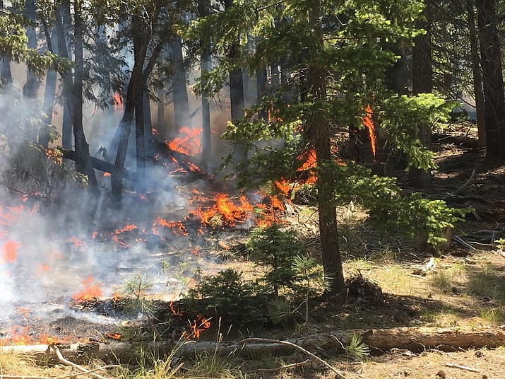 Coconino County has enacted Stage 1 fire restrictions for areas below the Mogollon Rim.