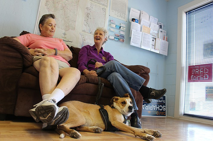 Political activist and state Senate candidate J'aime Morgaine, right, and Mohave County Democratic Chairwoman Marty Luna-Wolfe talk politics at the Democratic headquarters in downtown Kingman with Morgaine's service dog, Carry Anne, lying at their feet. (Hubble Ray Smith/Kingman Daily Miner)