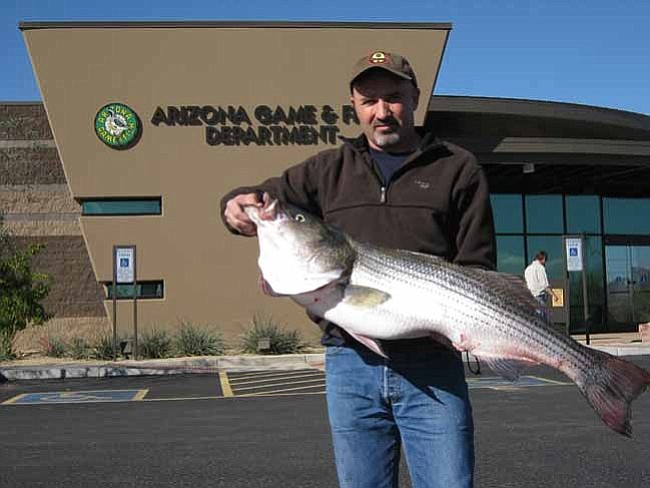 Fishing report anglers report good success for stripers for Seven b s fishing report
