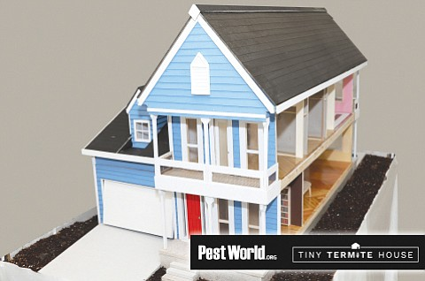 Entomologists planted a half million termites in the soil around this model home to research termite destruction. (National Pest Management Association/Courtesy)