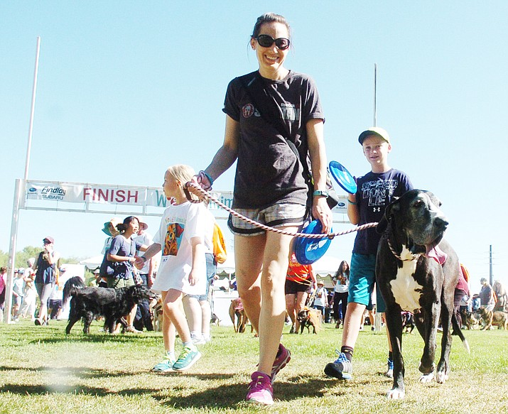 Kelsey Gardinee and her dog Nephthys, along with hundreds of others, begin their walk as part of the Yavapai Humane Society's Walk for the Animals fundraiser at Prescott Mile High Middle School Saturday, May 19, 2018. The walk raised an estimated $40,000. (Les Stukenberg/Courier)